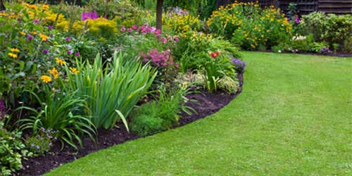 flower bed weed treatment in Goshen KY