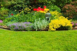 flower bed weed control in Louisville, Kentucky