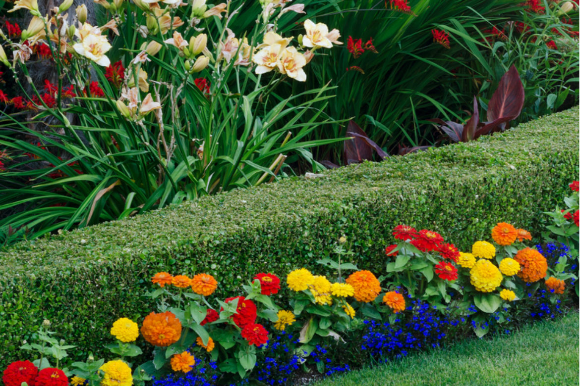 Four Easy Ways to Beautify Your Flower Bed
