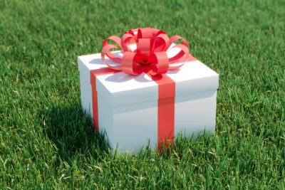 Give the Gift of Green With a Lawn Care Program From Farison Lawn Care