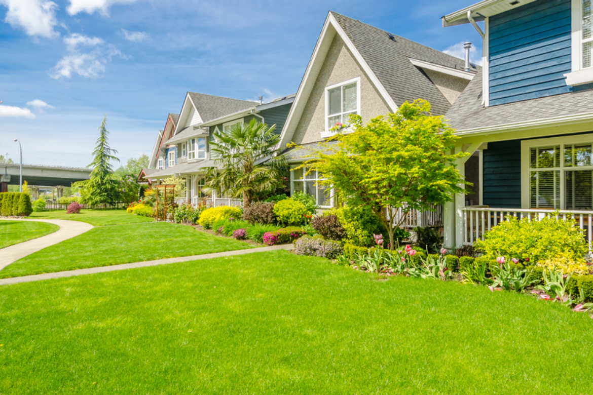 These Are Things You Can Do Now To Prevent Future Lawn Problems